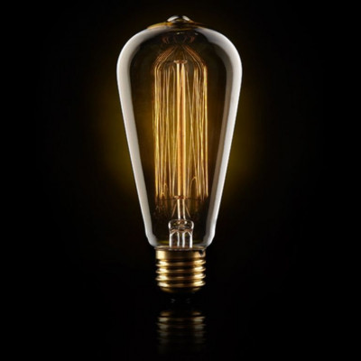 Large Squirrel Cage Filament Light Bulb 40W