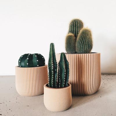 Wooden Geometrical Plant Pot Lotus