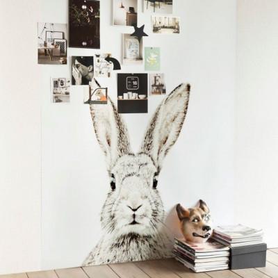 Magnettapete - Kaninchen