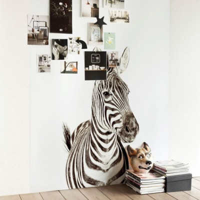 Magnettapete - Zebra