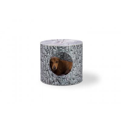 Hundebett Hollow | Alder