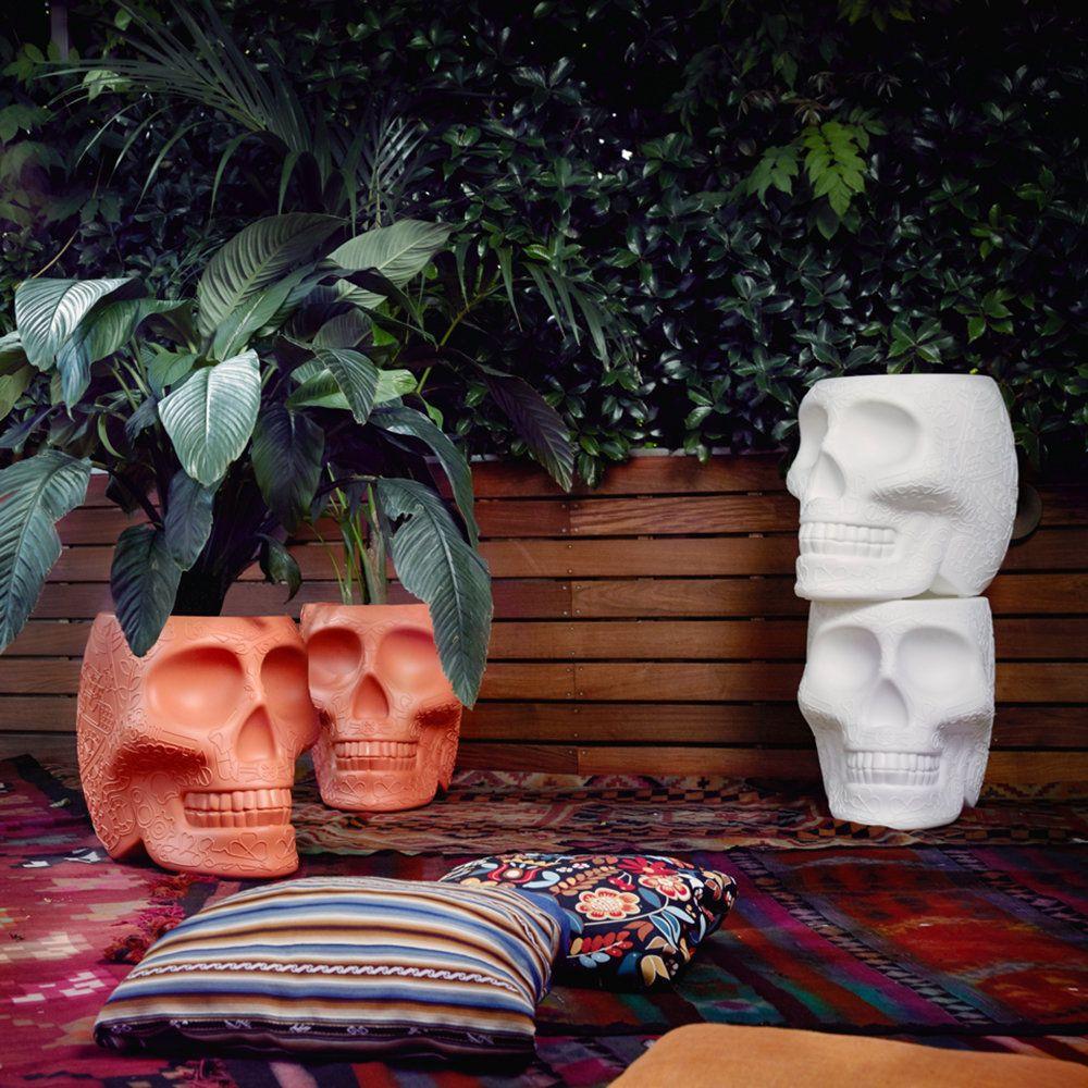 Pflanzer Mexiko | Elfenbeinweiß