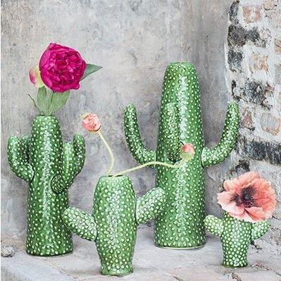 Vase Cactus | Medium