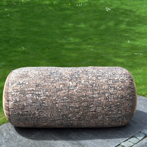 Forest Tree Trunk Outdoor