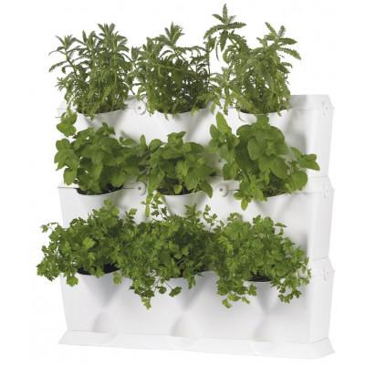Minigarten-Set Weiß