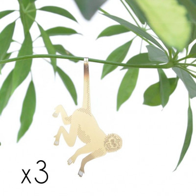 Plant Animals Set of Three | Orangutan / Monkey / Racoon