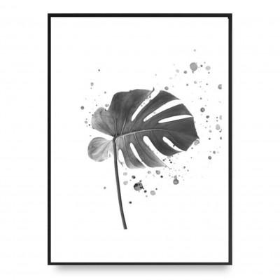 Poster | Monstera | Schwarz-Weiß