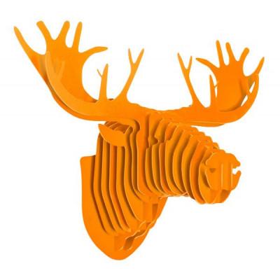 Moose | Orange
