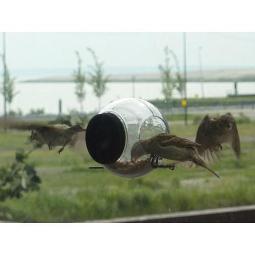 2er-Set Vogelfutter