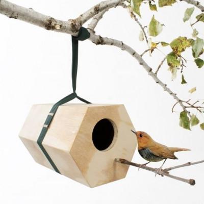 Nachbars Vogelhaus