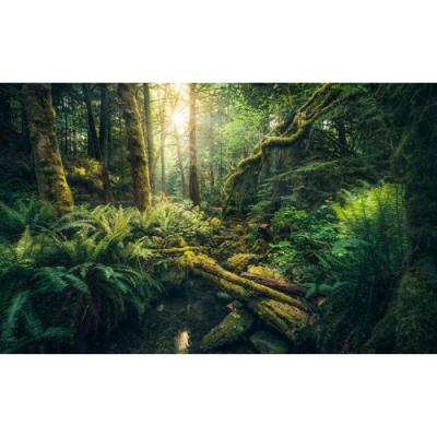 Photomural Smaragd | 450 x 280 cm