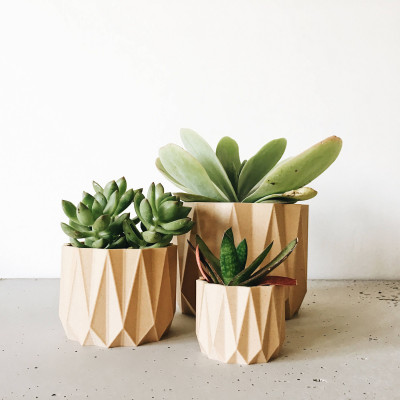 Wooden Geometrical Plant Pot Origami