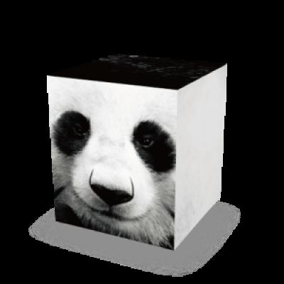 Auf allem Würfel sitzen | Panda