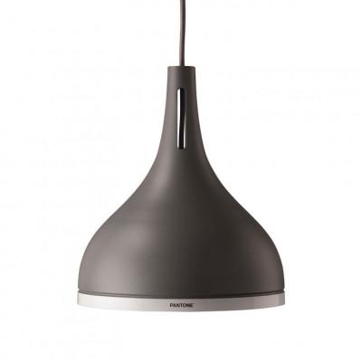 Castor 25 Pendant Lamp   Pewter