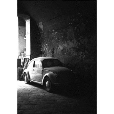 Käfer, Neapel