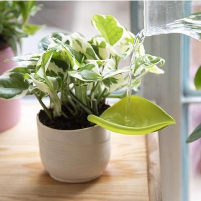 Funnel Watering Plants Leaflow | Set of 3