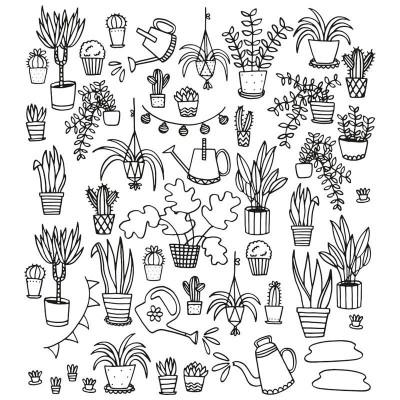 Eva Mouton Coloureable Wall Paper | Plant S