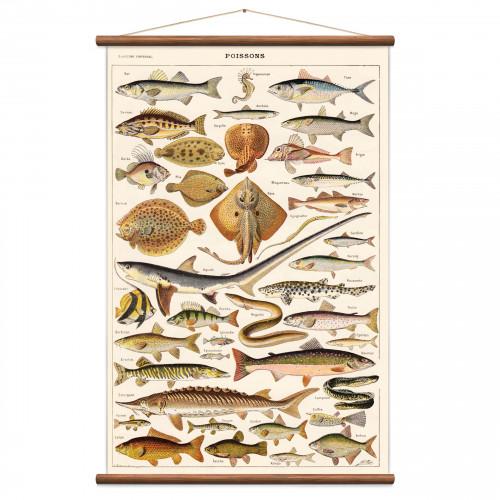 Vintage Poster Fische