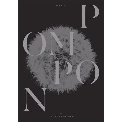 Pompon 2