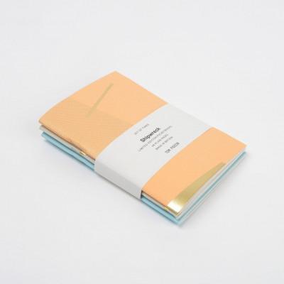 Shipwreck Pocketbook | Set of 3