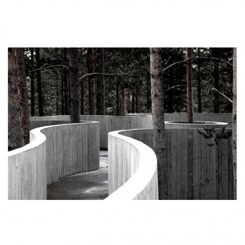 Print Trees & Concrete