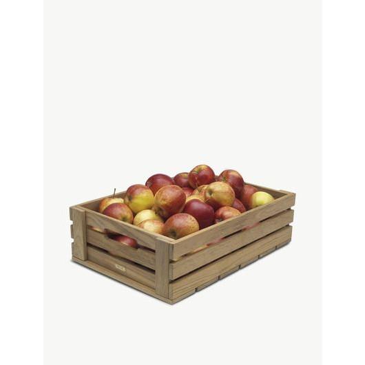 Dania Box 4   Teakholz