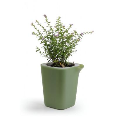 Selbstbewässernder Blumentopf Oasis Viereck S | Grün