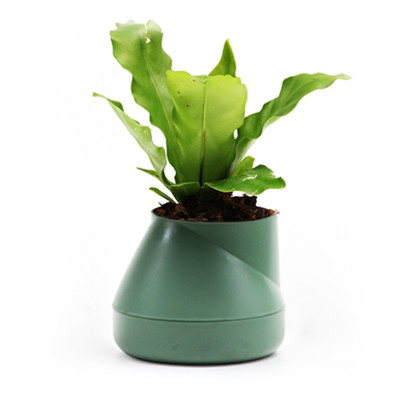 Selbstbewässernder Blumentopf Hill S | Grün