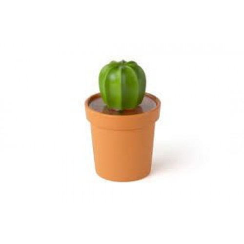 Cacnister Container | Orange/Green