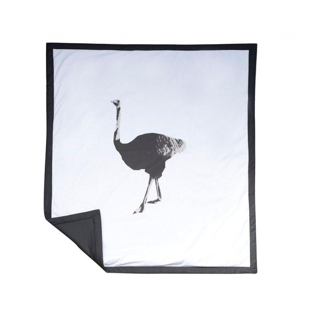 Plaid Ostrich