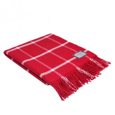 Windowpane Blanket   Red & White