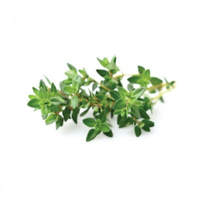 Refill 3-Pack   Thyme