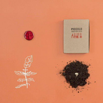 Red Seed Collection