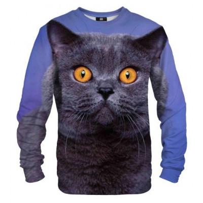Sweater | British Cat