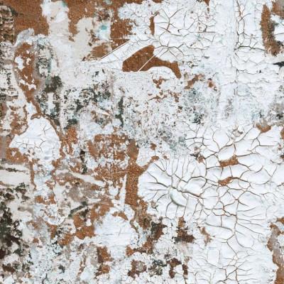 Wallpaper Safari | Bronze