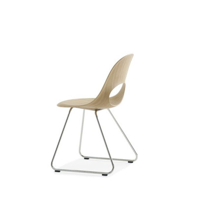 Sagen Sie O Stuhl | Buche