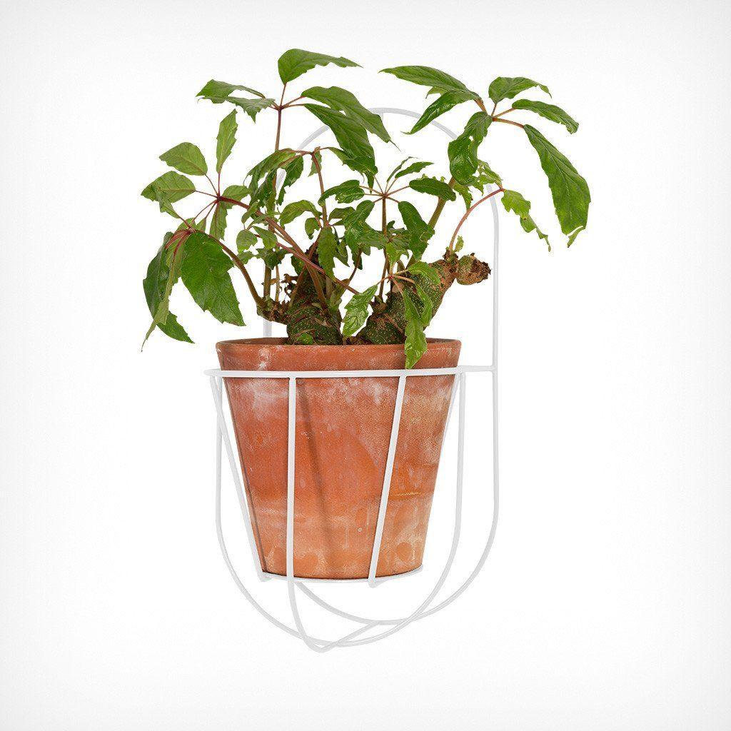 Wall Cibele   Plant Hanger White-S