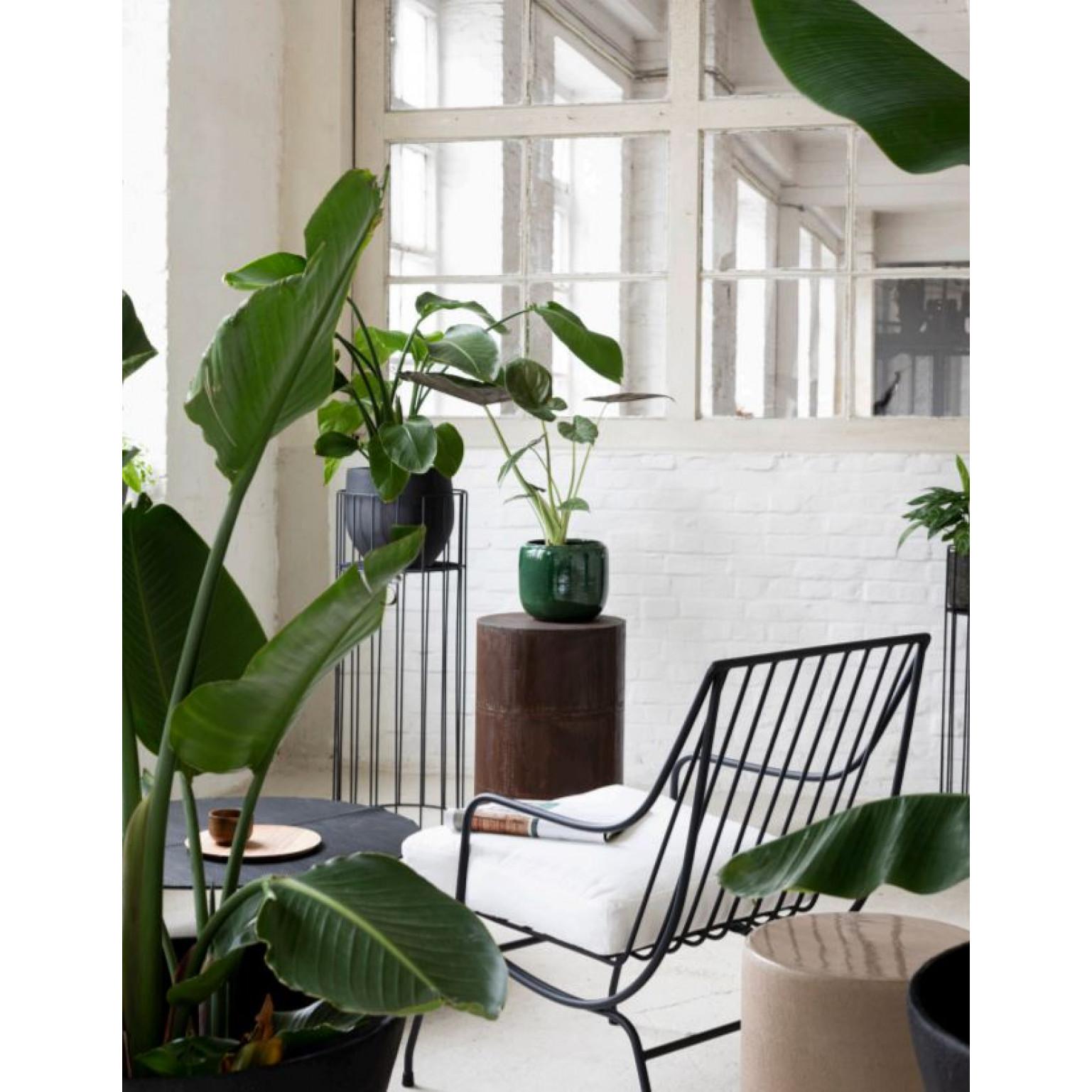 Plant Stand S    Black Vasaro