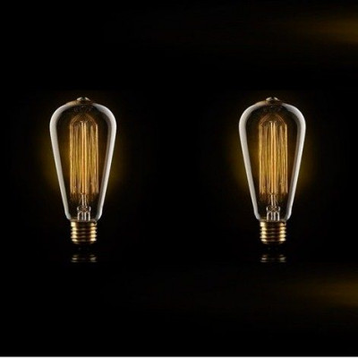A set of 2 Large Squirrel Cage Filament Light Bulb 40W