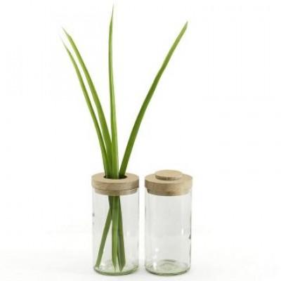 Vase & Glas | Transparent