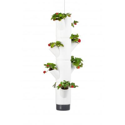Erdbeerturm SISSI Hanging | Weiß