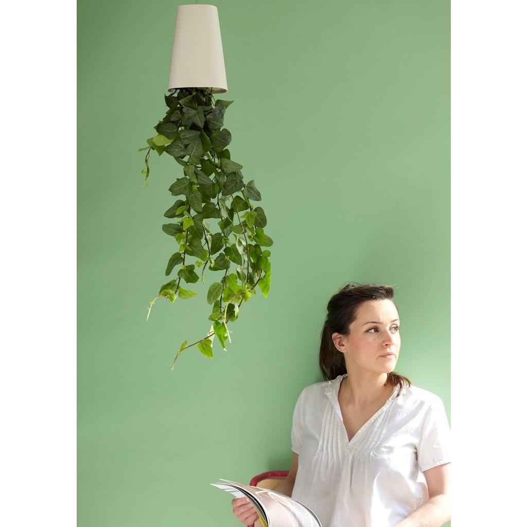 Himmelspflanze recycelt | Weiß-Klein