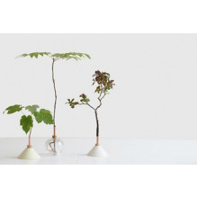 Glasilium Soliflore Vase   Moss Green