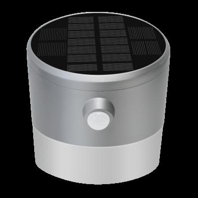 Solar LED Wandleuchte SLWL-300
