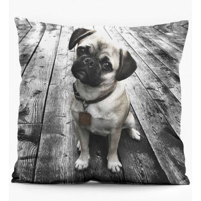 Pillow   Pug
