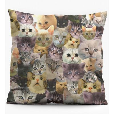 Pillow   Catz