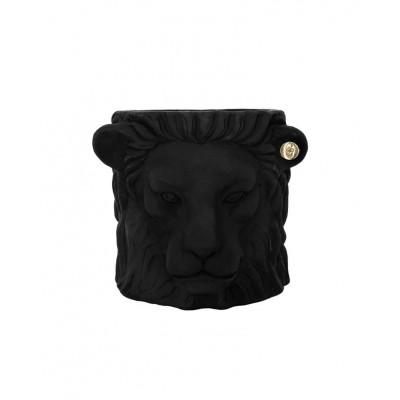 Pot Indoor Kleiner Löwe | Schwarz