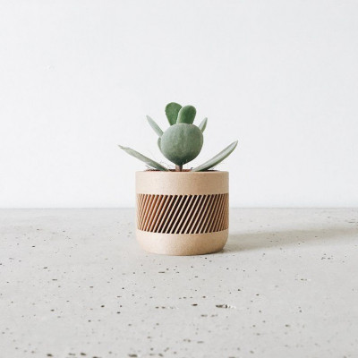 Wooden Geometrical Plant Pot Therma