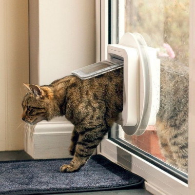 SureFlap Mikrochip Katzenklappe | Weiß
