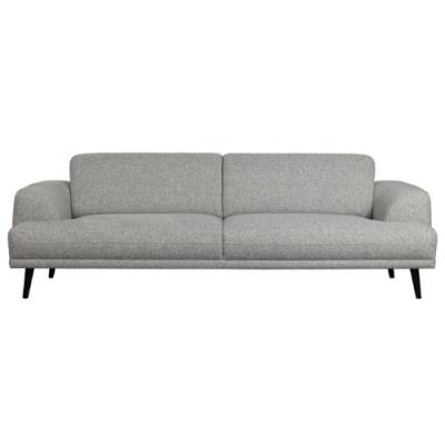 Sofa Brush | Asche
